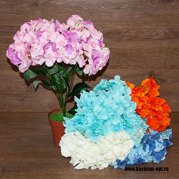 интерьерные цветы оптом
