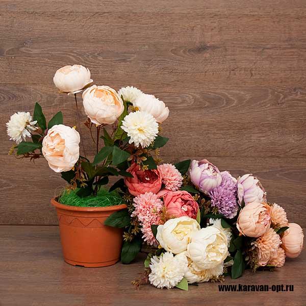 цветы интерьерные оптом